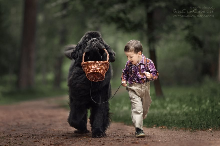 little kids and their big dogs bored panda - Picture Of Little Kids